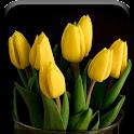 Spring Blossom Flowers Live icon
