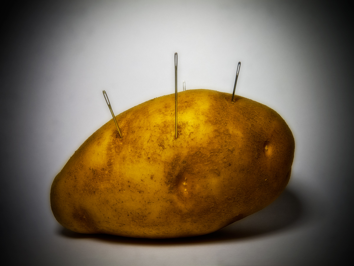 "Photo: My Potato Has Eyes Yes. Point taken.  Haiku: Potato has eyes, That cannot see anything; Make into french fries!  Back to the studio ( read: ""kitchen"" ) this week. Since potatoes have eyes, and so do needles, the combination seemed easy er, natural. Setup was one potato, four needles, one sheet of bright white inkjet paper, and one compact fluorescent desk lamp on the kitchen counter.  +Project52-2012 +GPLUS::P52::2012 #2012Project52 +Kate Church +Giuseppe Basile"