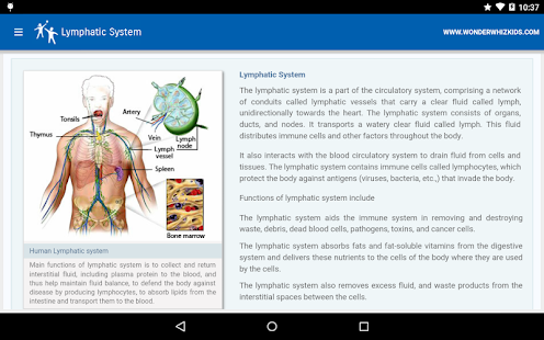 Lymphatic System - Apps on Google Play