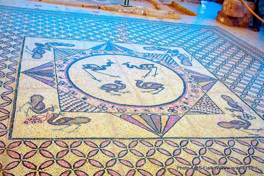 Мозаика в древней синагоге заповедника Эйн-Геди в Иудейской пустыне. Экскурсии в Израиле.
