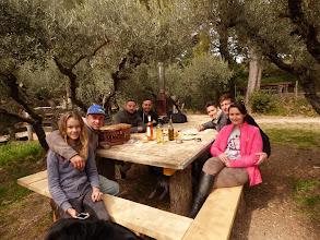 Photo: Pique nique sous les oliviers (aire N°1)