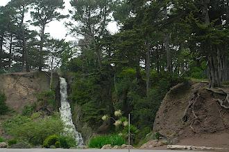 Photo: Golden Gate Park