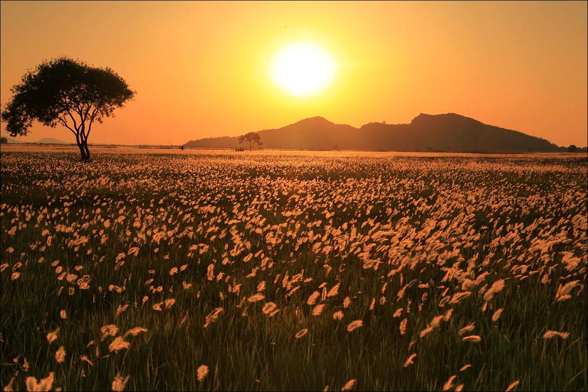 hyungdo island