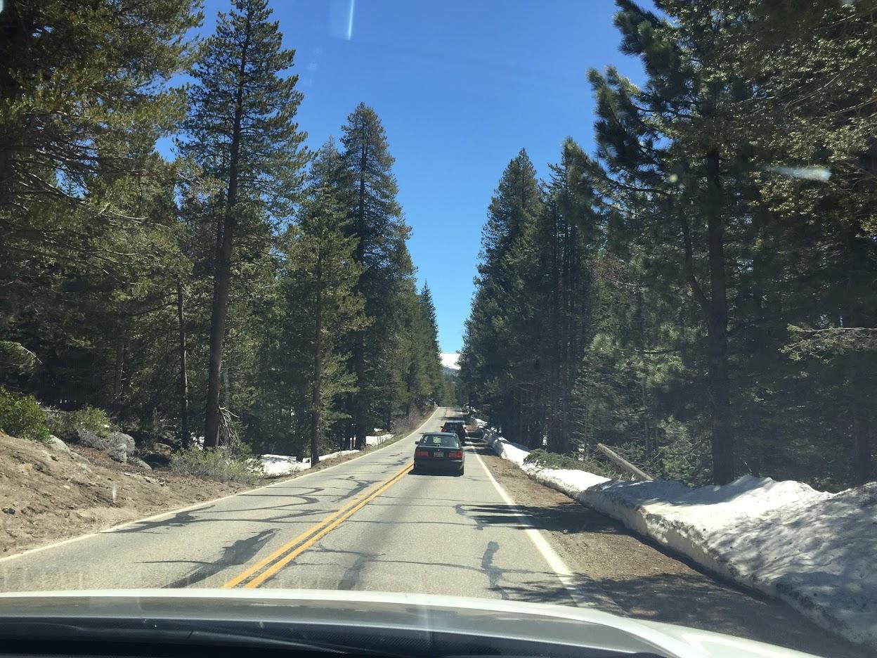 Yosemite Snow