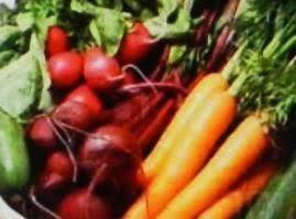 10 New Veggie Recipes