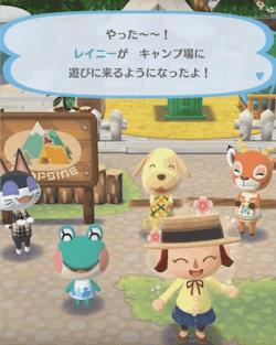 キャンプ場への招待