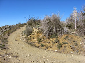 Photo: From the same location, view southwest toward the final pitch to the summit