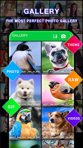 Photo Gallery 4.4.3 screenshots 6