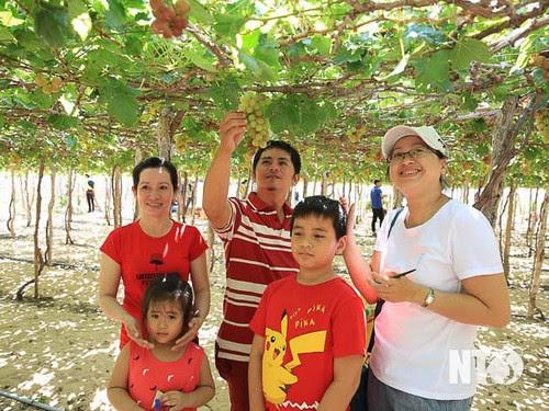 Du lịch Ninh Thuận vào mùa cao điểm 3