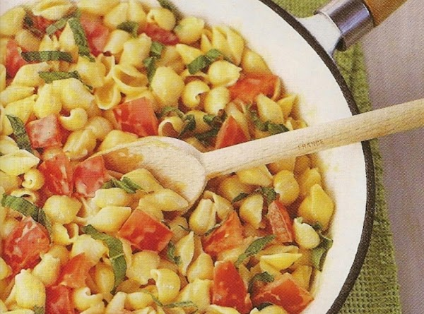 Shells With Tomatoe And Basil Recipe