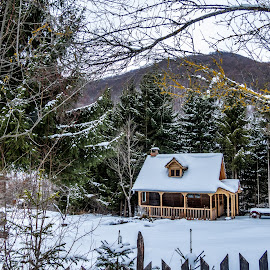 Winter pastoral by Branislav Mitrovic - Buildings & Architecture Homes ( cabin, home, wooden, winter, snow, pastoral )
