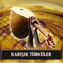 Seçme Türküler Türkülerimiz (İnternetsiz 60 Türkü) icon