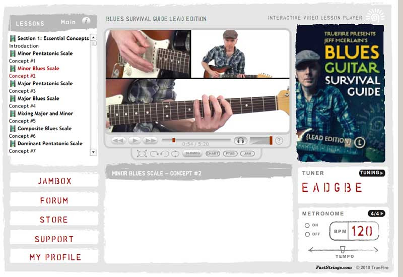 Jeff McErlain - Blues Guitar Survival Guide (Lead Edition)