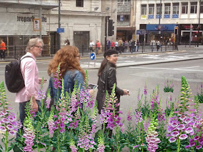 Photo: Biomer Skelters plantings on the way from FACT to the World Museum. With John Daly, Alexandra Morton (FACT) and Tamiko Thiel.