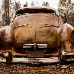 Nash by Michael Mercer - Transportation Automobiles