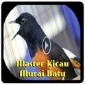 Masteran Murai Batu Roll Speed Offline icon