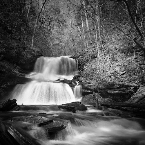 Tuscarora Falls, 2015.05.08 by Aaron Campbell - Instagram & Mobile iPhone ( blackandwhite, iphone6plus, waterfall, slowshutter, pennsylvania, statepark, spring, rickettsglen )