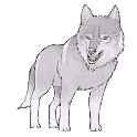 How to draw a wolf by steps with a pencil icon