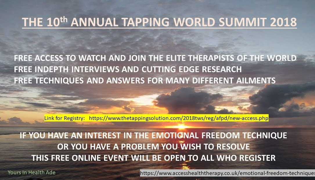 WORLD SUMMIT FLYER