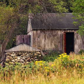 old barn by April Brown - Buildings & Architecture Other Exteriors ( field, farm, old, barn, green, trees, stone, rustic )
