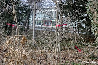 Photo: Markierungen im Grüngürtel entlang der Pragstraße B 10 gegenüber BMW-Niederlassung