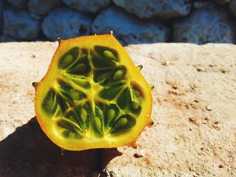 Kiwano: il melone cornuto di noncecrisi