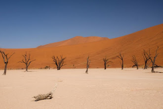 Photo: Namib Naukluft - Dead Vlei