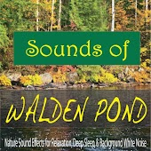 Sounds of Walden Pond: Nature Sound Effects for Relaxation, Deep Sleep, & Background White Noise