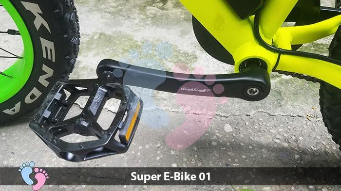 Xe đạp điện địa hình Super E-Bike 01 12