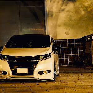 オデッセイ RC2 アブソルート・EX_8人乗り_4WD(CVT_2.4)のカスタム事例画像 sekoパパさんの2018年11月04日10:02の投稿