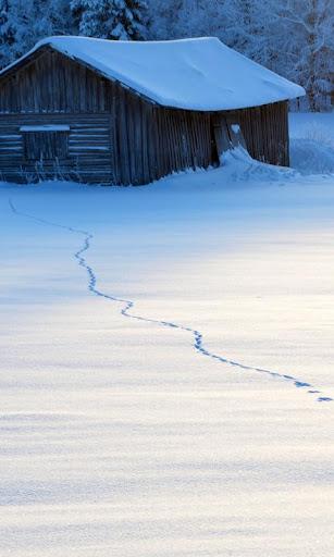 바탕 화면 겨울