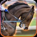 Cavalo Simulator icon