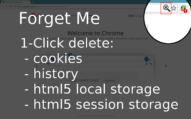Forget Me - Clean History, Cookies & more