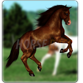 Horse Race Live