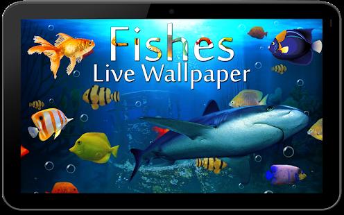 Fish live wallpaper 3d aquarium phone background hack for 3d fish live wallpaper