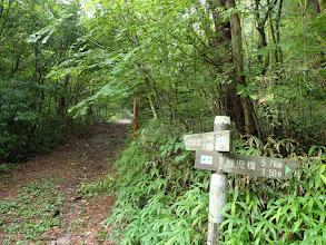 自然歩道を進む