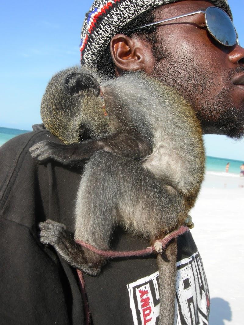 Coppia da Spiaggia a Zanzibar di Monica_Saba