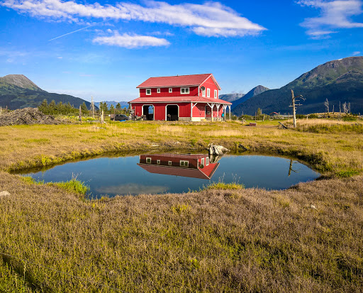 13 WP_20150806_09_19_49_Rich.jpg - For many animals rescued by Alaska Wildlife Conservation Center, this is home