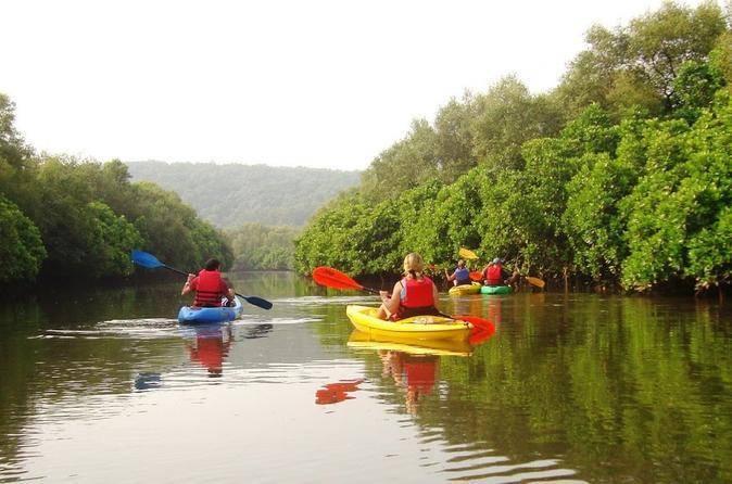 kayaking-goa_image