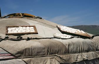 Photo: 03138 ウランバートル/牧民の家/ゲルの屋根に乳製品を干す
