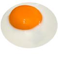 Egg Fall