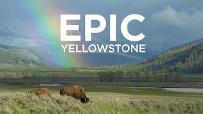 Epic Yellowstone thumbnail