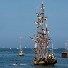 The Tall Ships Leave Port by Phil Robson - Transportation Boats