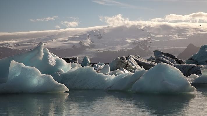 Icelandic blue ice di daniela giannangeli