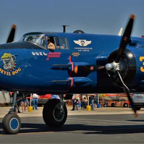 Running Dog by Benito Flores Jr - Transportation Airplanes ( plane, air show, b-25, texas, marine )