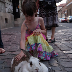 by Tadeia Fedor - City,  Street & Park  Street Scenes (  )