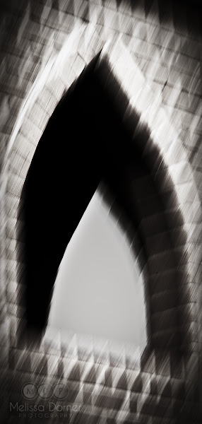 Photo: Experimenting with in-camera motion blur for creative effect. #blur