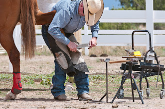 Photo: Farrier shoeing a horse