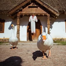 Wedding photographer Dasha Salina (Escorzo). Photo of 20.10.2017