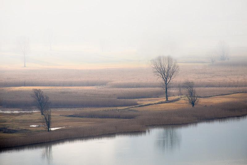 nebbia in pianura di carcat